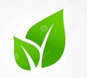 Cambridge Schools Eco Council Logo